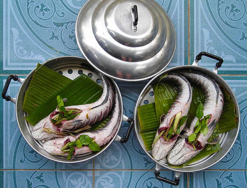 ricette per vaporiera elettrica pesce